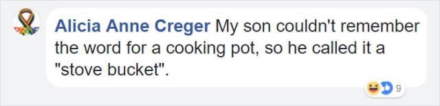 """Text - Alicia Anne Creger My son couldn't remember the word for a cooking pot, so he called it a """"stove bucket"""""""