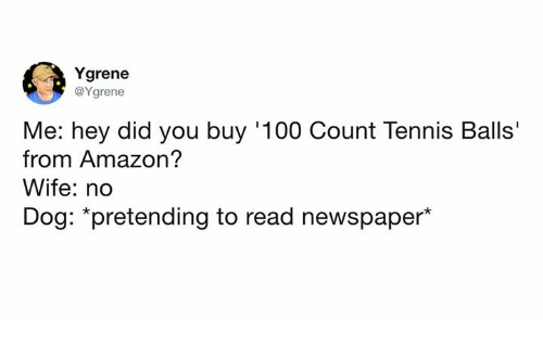 """Me: Hey did you buy 100-count tennis balls from Amazon? Wife: No; Dog: Pretending to read newspaper"""