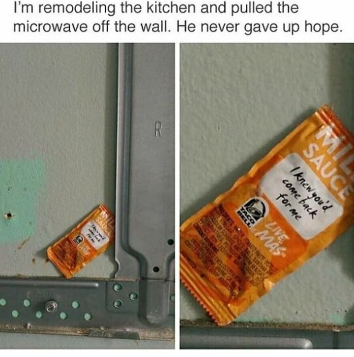 wholesome meme - Font - I'm remodeling the kitchen and pulled the microwave off the wall. He never gave up hope. R MIL SAUCE Iknewyou'd come back for me LIVE OER MAT PS AR SPOE ENG SUN SAUCE