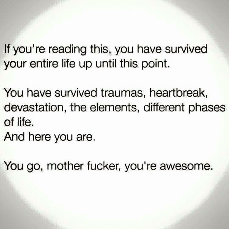 wholesome meme - Text - If you're reading this, you have survived your entire life up until this point. You have survived traumas, heartbreak, devastation, the elements, different phases of life And here you are You go, mother fucker, you're awesome