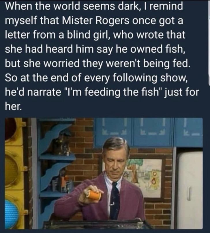 """wholesome meme - Text - When the world seems dark, I remind myself that Mister Rogers once got a letter from a blind girl, who wrote that she had heard him say he owned fish, but she worried they weren't being fed. So at the end of every following show, he'd narrate """"I'm feeding the fish"""" just for her."""