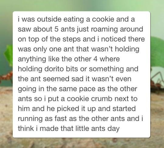 wholesome meme - Text - was outside eating a cookie and a saw about 5 ants just roaming around on top of the steps and i noticed there was only one ant that wasn't holding anything like the other 4 where holding dorito bits or something and the ant seemed sad it wasn't even going in the same pace as the other ants so i put a cookie crumb next to him and he picked it up and started running as fast as the other ants and i think i made that little ants day