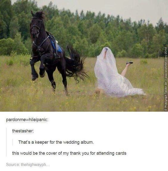 bride falling off the back of a black horse thats runnning away That's a keeper for the wedding album. this would be the cover of my thank you for attending cards