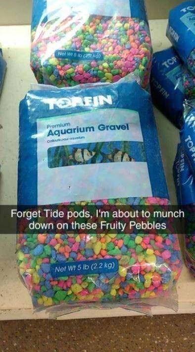 Textile - on Nel W 5 ib ( TOP TOREIN Promium Aquarium Gravel ooutpou otm Forget Tide pods, I'm about to munch down on these Fruity Pebbles Net Wt 5 lb (2.2 kg) TOP OPFIN PEIN