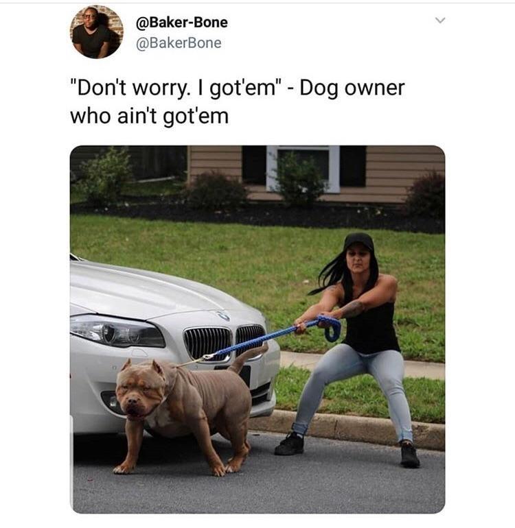 """Dog - @Baker-Bone @BakerBone """"Don't worry. I got'em"""" - Dog owner who ain't got'em"""