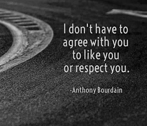 Text - I don't have to agree with you to like you or respect you. Anthony Bourdain