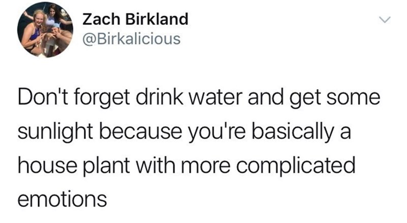 """Don't forget to drink water and get some sunlight because you're basically a house plant with more complicated emotions"""