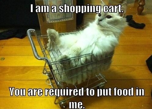 Cat - T am a shopping cart You are required to put food in me