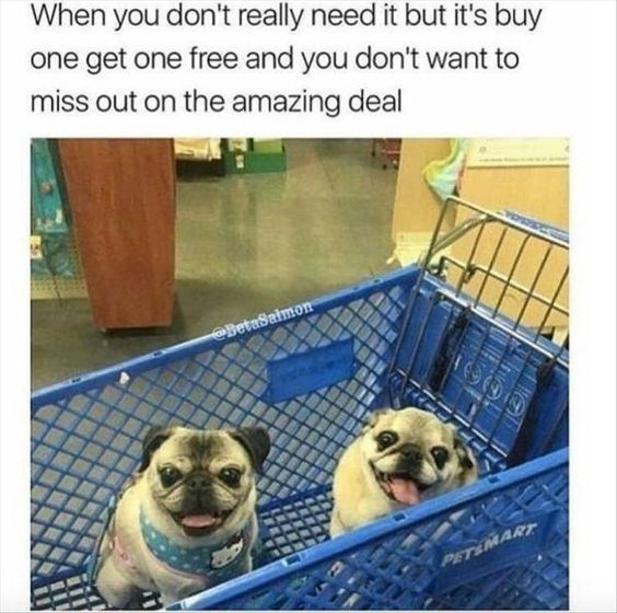 Pug - When you don't really need it but it's buy one get one free and you don't want to miss out on the amazing deal BetaSalmon PETEIMART