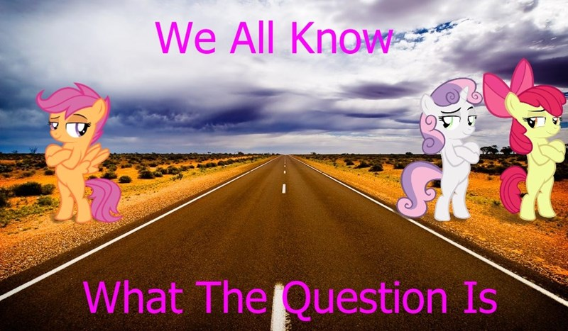 Sweetie Belle apple bloom why did the chicken cross the road Scootaloo - 9175041024