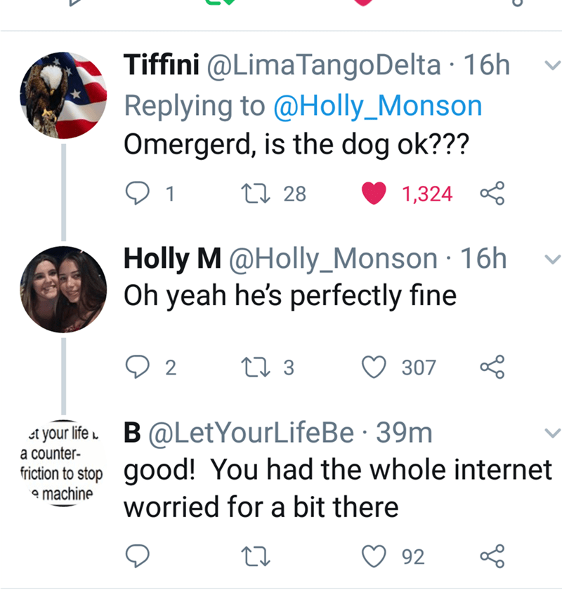 Someone asks if the dog is okay, to which Holly replies that he is fine