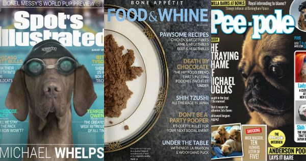dogs covers magazines graphic design