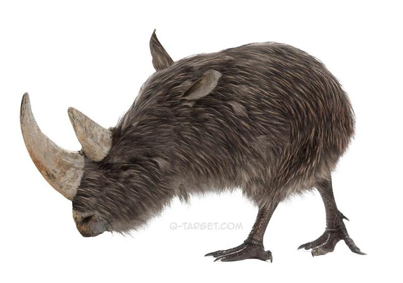 animal mashup pics - Vertebrate - Q-TARGET.COM