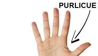 Finger - PURLICUE