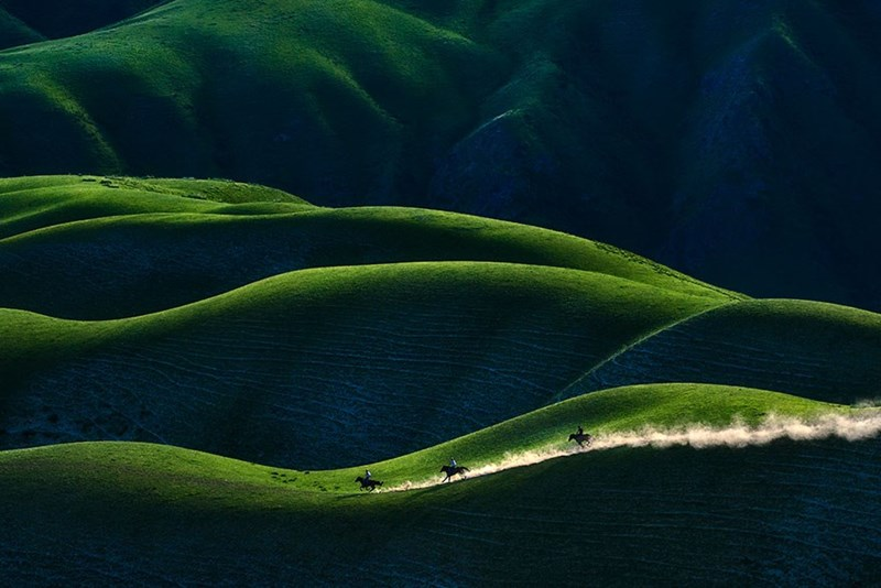 2018 Sony World Photography National Awards - Green