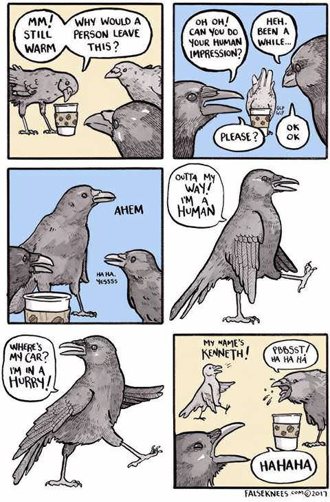 comic about crows making fun of humans