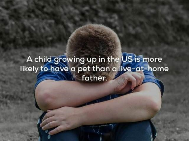 Arm - A child growing up in the US is more likely to have a pet than a live-at-home father.