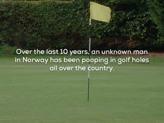 Sport venue - Over the last 10 years, an unknown man in Norway has been pooping in golf holes all over the country.