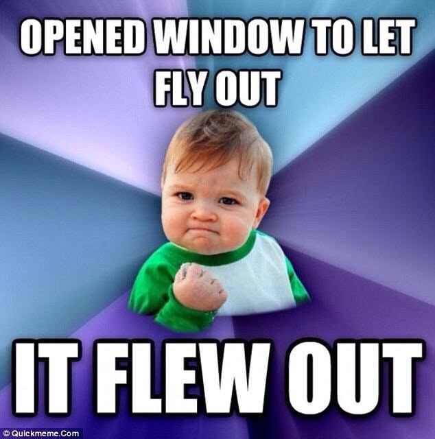 "Success kid meme with the caption: ""Opened window to let fly out - it flew out"""