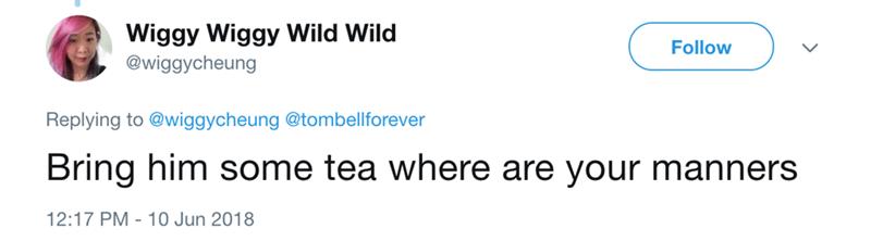 fox sunbathing - Text - Wiggy Wiggy Wild Wild Follow @wiggycheung Replying to @wiggycheung @tombellforever Bring him some tea where are your manners 12:17 PM 10 Jun 2018