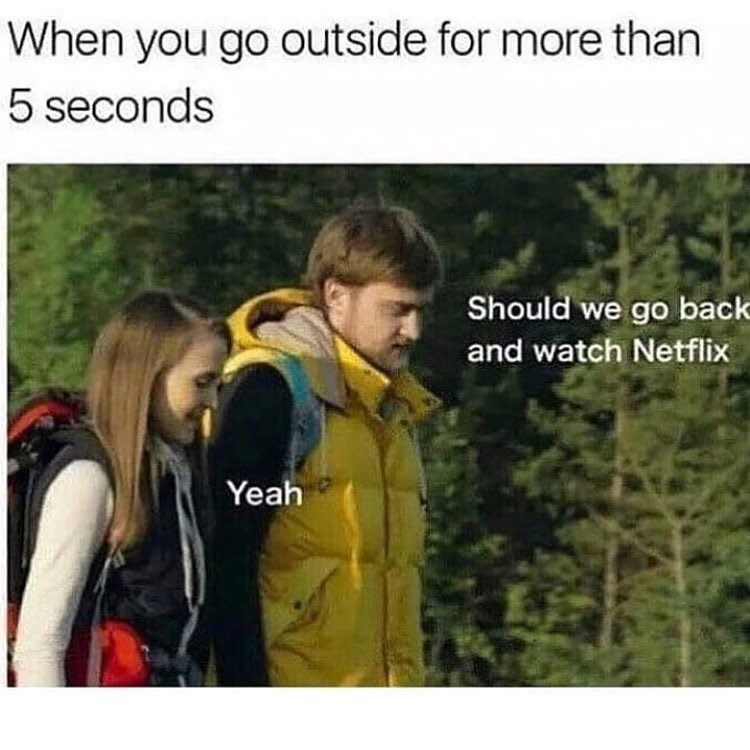 Funny meme about staying inside and watching netflix.