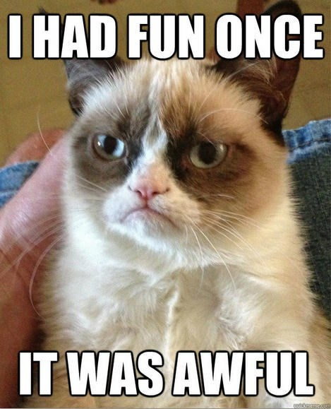 meme - Cat - I HAD FUN ONCE IT WAS AWFUL qutmamaco