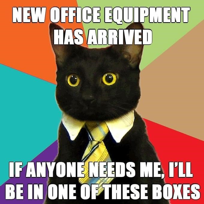 meme - Cat - NEW OFFICE EQUIPMENT HAS ARRIVED IF ANYONENEEDS ME, I'LL BE IN ONE OF THESE BOXES