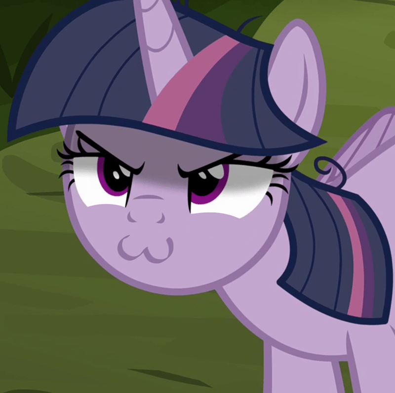 does this look like the face of mercy twilight sparkle screencap the mean six Memes - 9176180992