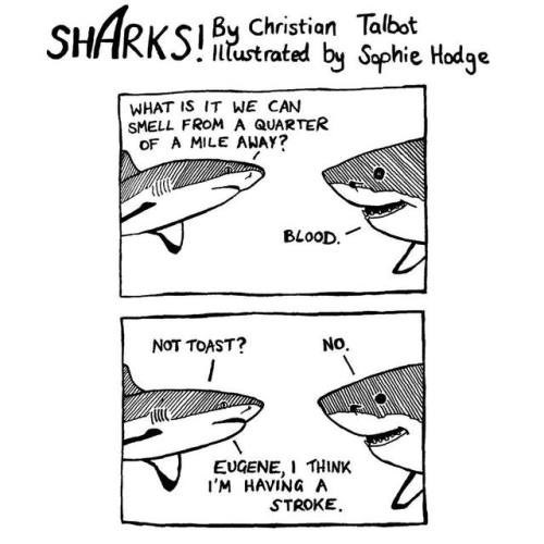 Text - SHARKS Crition Tabt by Saphie Hodge lustrated WHAT IS IT WE CAN SMELL FROM A QUARTER OF A MILE AHAY? BLOOD. NOT TOAST? No. EUGENE,I THINK I'M HAVING A STROKE