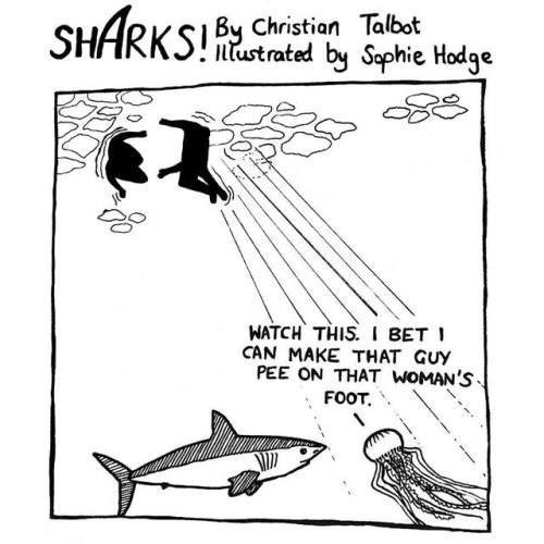 Line art - SHARKS Chon Tabst itustrated by Sophie Hodge WATCH THIS. BET CAN MAKE THAT GUY PEE ON THAT WOMAN'S FOOT