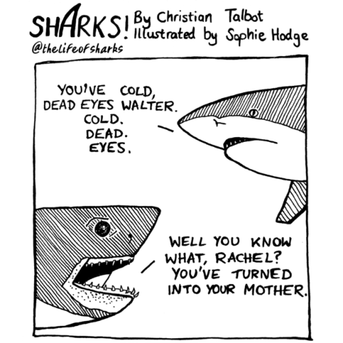 White - SHARKSI Christion Talbat @thelifeofsharks ntustrated by Saphie Hodge YouiVE COLD, DEAD EYES WALTER. COLD. DEAD EYES WELL YOU KNOW WHAT, RACHEL? You'VE TURNED INTO YOUR MOTHER
