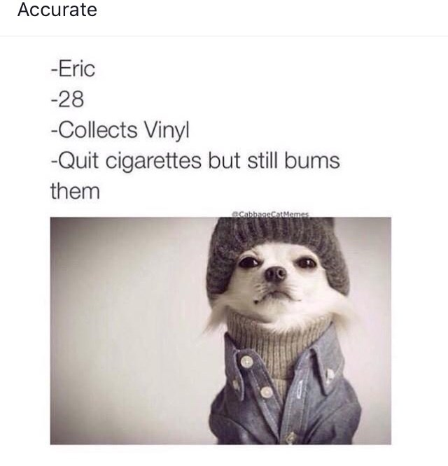 Text - Accurate -Eric -28 -Collects Vinyl -Quit cigarettes but still bums them eCabbaneCatMemes