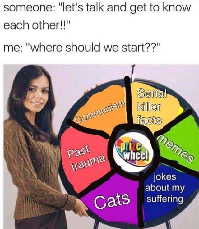 """Advertising - someone: """"let's talk and get to know each other!!"""" me: """"where should we start??"""" Serial killer facts memes wheel Communism Past trauma jokes about my Cats suffering"""