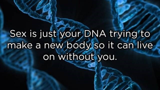 Organism - Sex is just your DNA trying'to make a new body so it can live on without you.