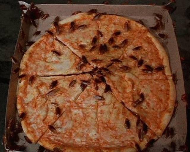 Cheezburger Image 9177214976