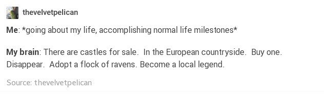 Text - thevelvetpelican Me: *going about my life, accomplishing normal life milestones* My brain: There are castles for sale. In the European countryside. Buy one. Disappear. Adopt a flock of ravens. Become a local legend Source: thevelvetpelican