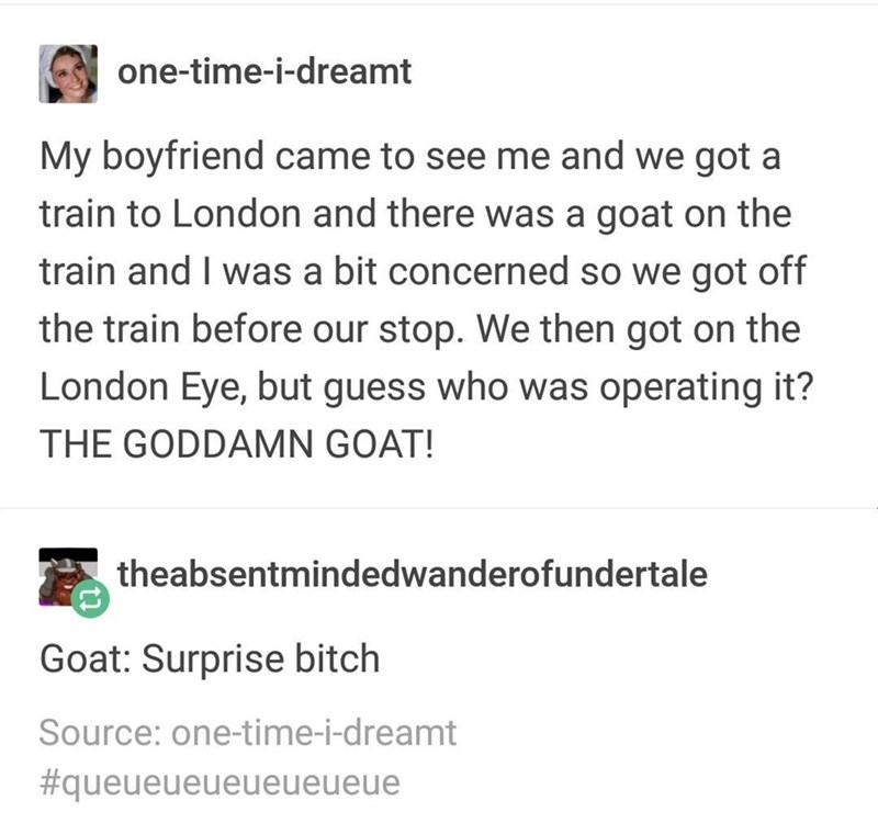 Text - one-time-i-dreamt My boyfriend came to see me and we got a train to London and there was a goat on the train and I was a bit concerned so we got off the train before our stop. We then got on the London Eye, but guess who was operating it? THE GODDAMN GOAT! theabsentmindedwanderofundertale Goat: Surprise bitch Source: one-time-i-dreamt #queueueueueueueue