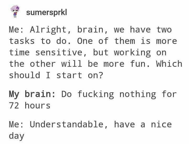 Text - sumersprkl Me: Alright, brain, we have two tasks to do. One of them is mor time sensitive, but working on the other will be more fun. Which should I start on? My brain: Do fucking nothing for 72 hours Me: Understandable, have a nice day
