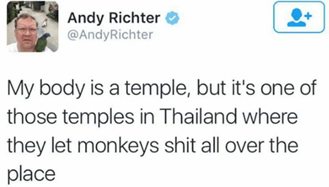 Text - Andy Richter @AndyRichter My body is a temple, but it's one of those temples in Thailand where they let monkeys shit all over the place