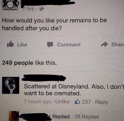 Text - 7hrs How would you like your remains to be handled after you die? Share Like Comment 249 people like this. Scattered at Disneyland. Also, I don't want to be cremated. 7 hours ago Unlike 237 Reply Replied 28 Replies