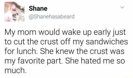 Text - Shane @Shanehasabeard My mom would wake up early just to cut the crust off my sandwiches for lunch. She knew the crust was my favorite part. She hated me so much.