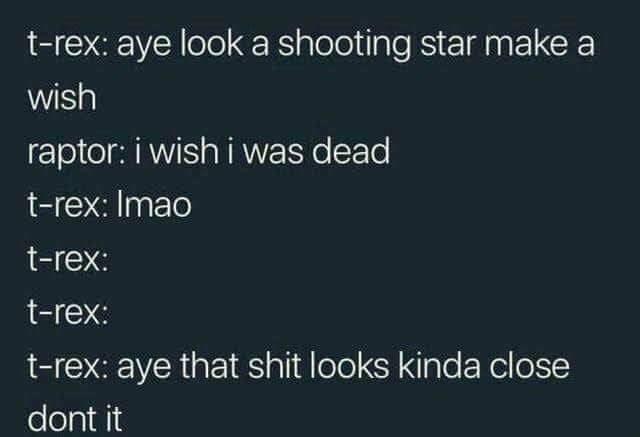 Text - t-rex: aye look a shooting star make a wish raptor: i wish i was dead t-rex: Imao t-rex: t-rex: t-rex: aye that shit looks kinda close dont it