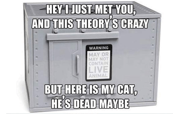 HEY IJUST MET YOU, AND THIS THEORY'S CRAZY WARNING MAY OR MAY NOT CONTAIN LIVE ANIMAL BUT HERE IS MY CAT HES DEAD MAYBE