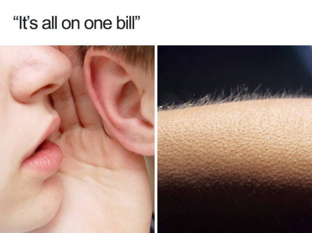 "Ear - ""It's all on one bill"""