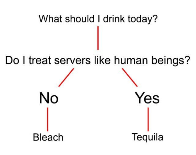 Text - What should I drink today? Do I treat servers like human beings? No Yes Tequila Bleach