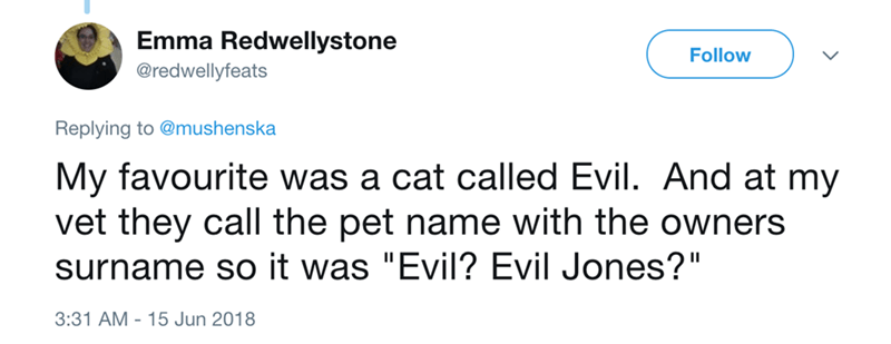 "Text - Emma Redwellystone Follow @redwellyfeats Replying to @mushenska My favourite was a cat called Evil. And at my vet they call the pet name with the owners surname so it was ""Evil? Evil Jones?"" 3:31 AM 15 Jun 2018"