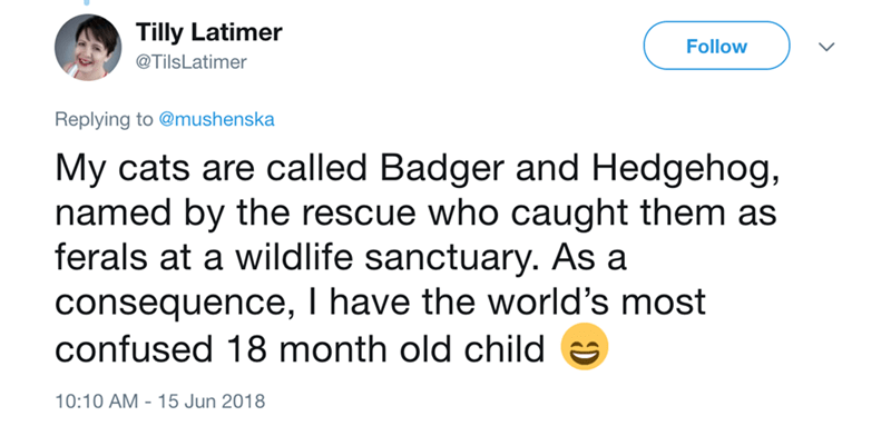 Text - Tilly Latimer Follow @TilsLatimer Replying to @mushenska My cats are called Badger and Hedgehog, named by the rescue who caught them as ferals at a wildlife sanctuary. As a consequence, I have the world's most confused 18 month old child 10:10 AM 15 Jun 2018