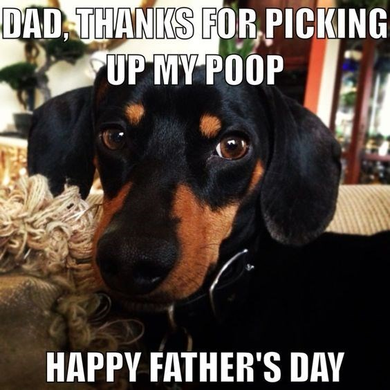 father's day animals - Dog - DAD THANKS FOR PICKING UP MY POOP HAPPY FATHER'S DAY