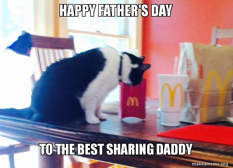 father's day animals - Cat - HAPPY FATHER'S DAY TO THE BEST SHARING DADDY makeameme.org