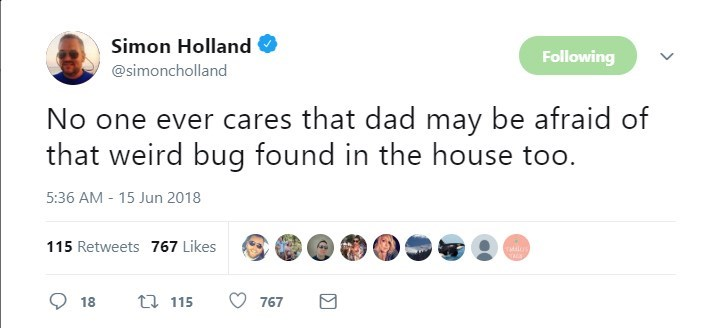 Text - Simon Holland Following @simoncholland No one ever cares that dad may be afraid of that weird bug found in the house 5:36 AM 15 Jun 2018 115 Retweets 767 Likes t 115 18 767